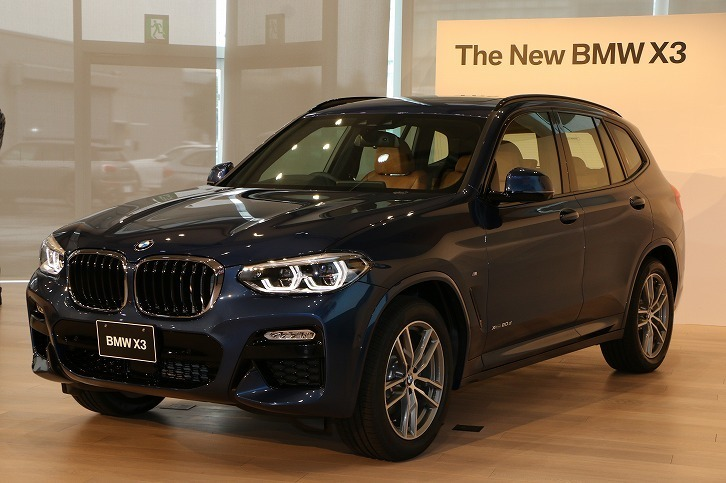 bmw 3 x3 webcg. Black Bedroom Furniture Sets. Home Design Ideas